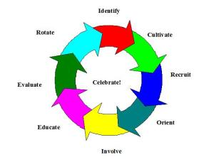 board building cycle