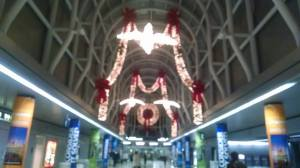 ohare at christmas