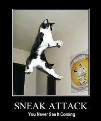 sneak attack